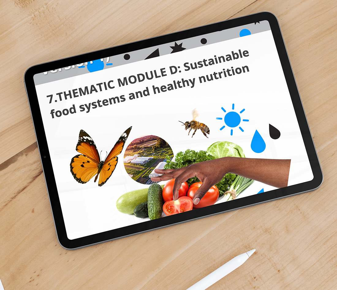 HELSUS Cross-disciplinary Sustainability Course Graphics